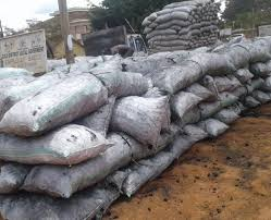 Kwania District Local Government Bans Trading In Charcoal