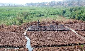 Cracking the Whip on Wetland Encroachers: 7 Prosecuted  in  Kwania District.