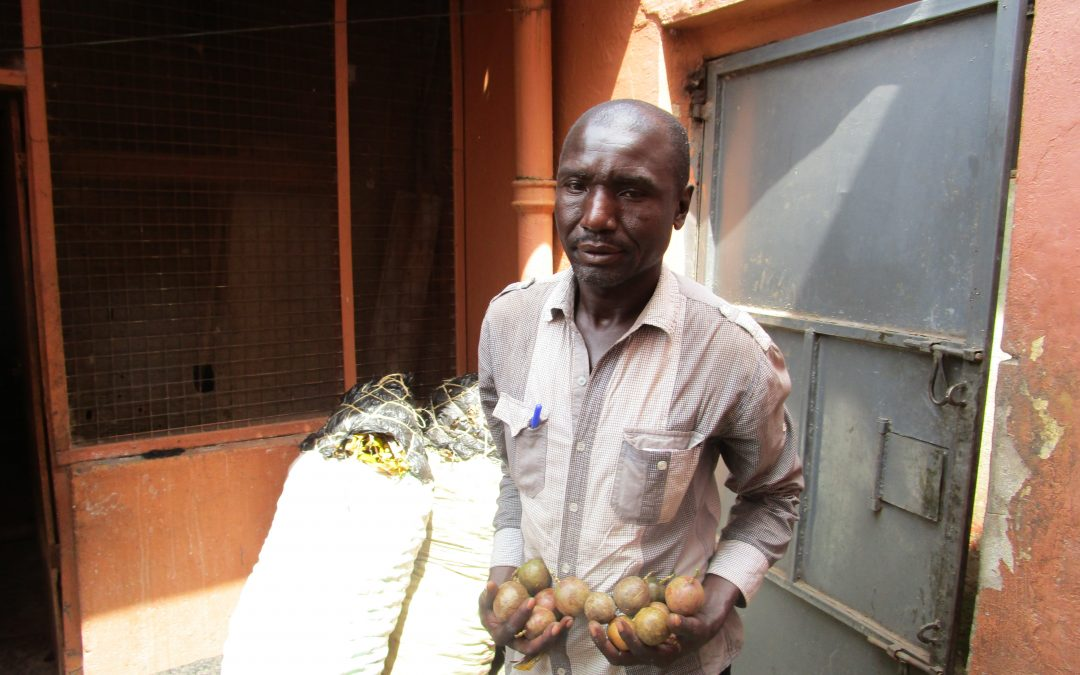 Kwania Abongomola Passion Fruit Farmer Eyes A Juice Factory In Lango